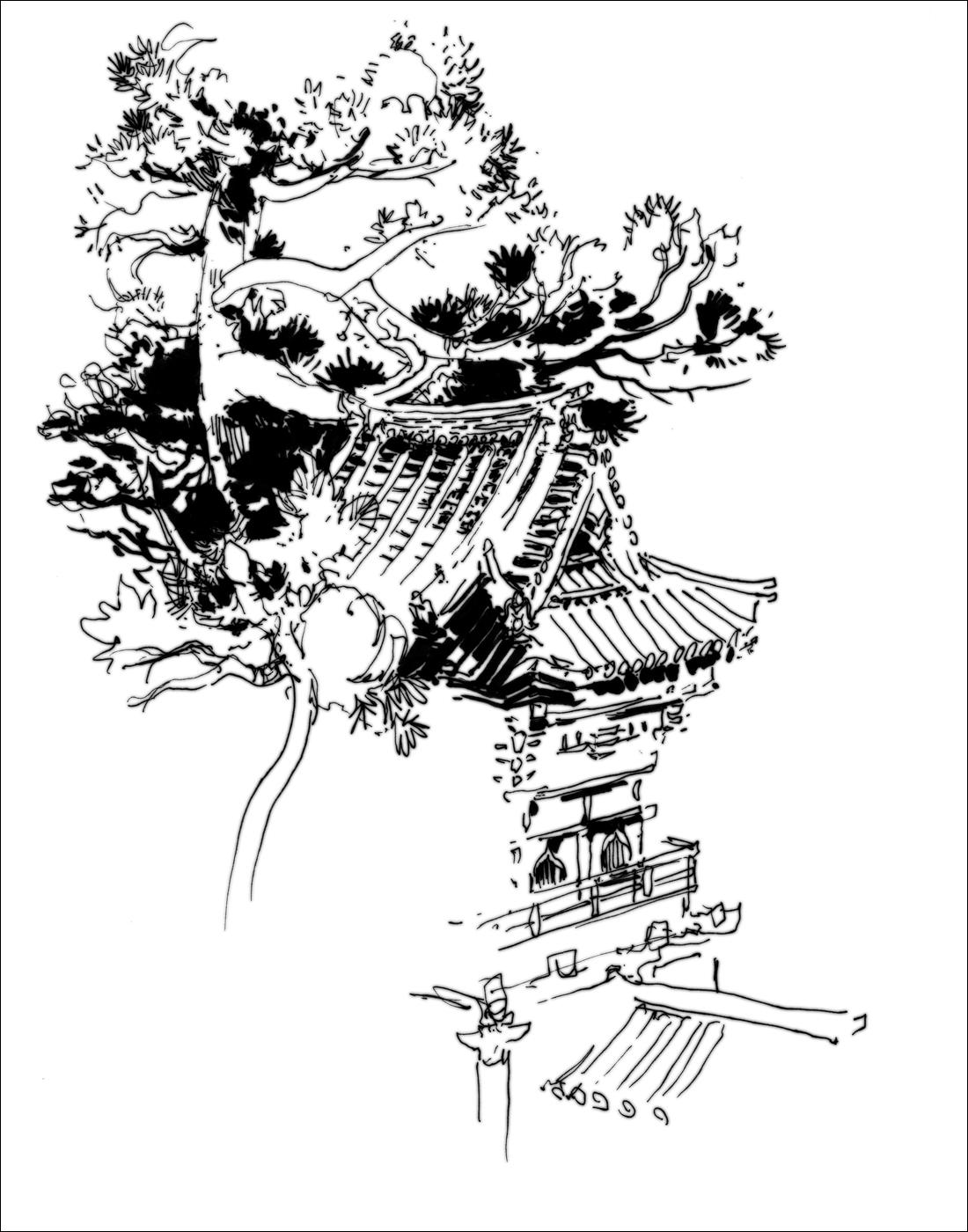 Line Drawing Garden : World wide sketchcrawl japanese garden golden gate