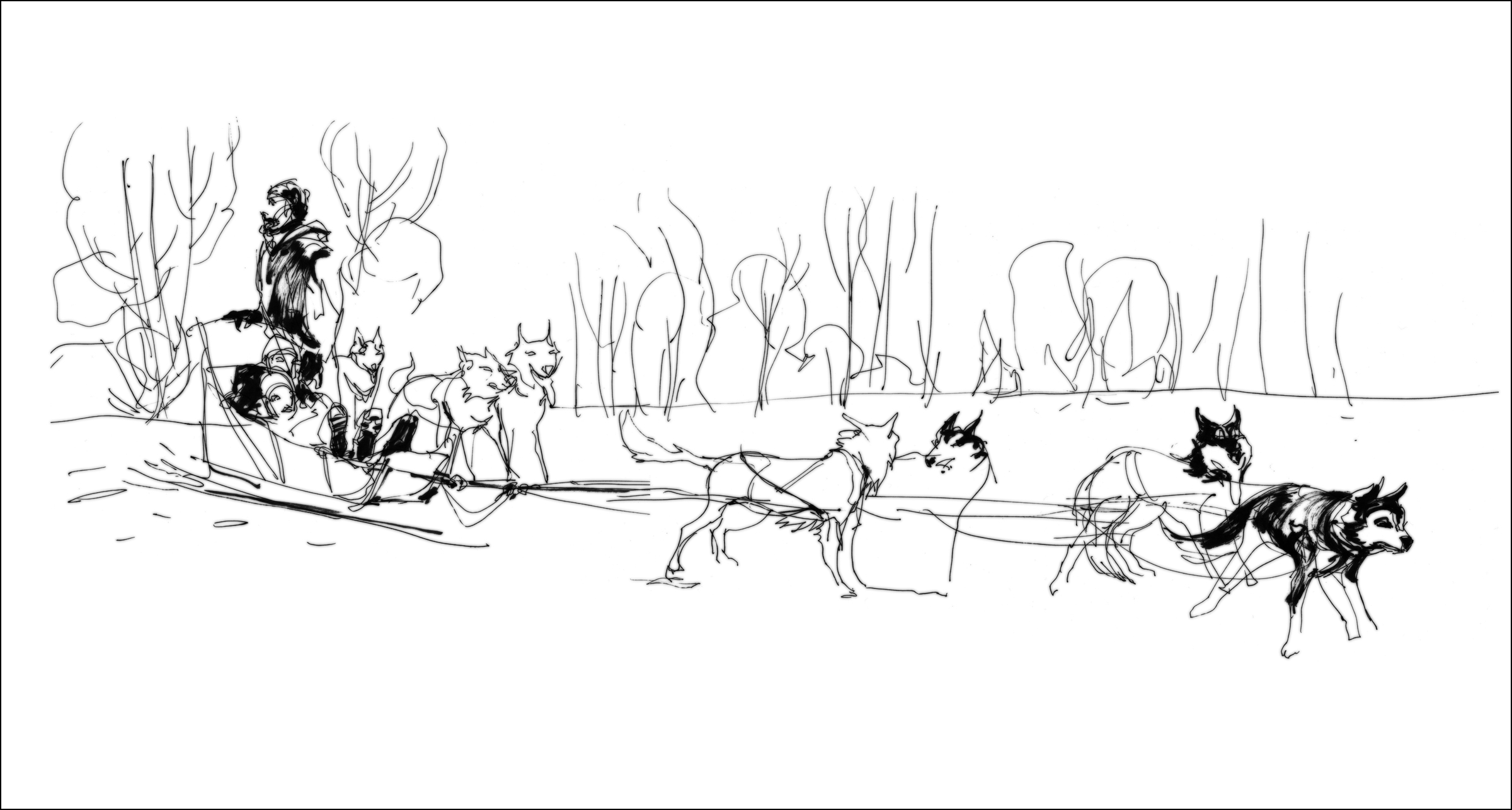 dog sled races coloring pages - photo#28