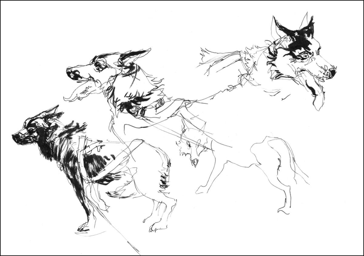 run dog run urban sketchers