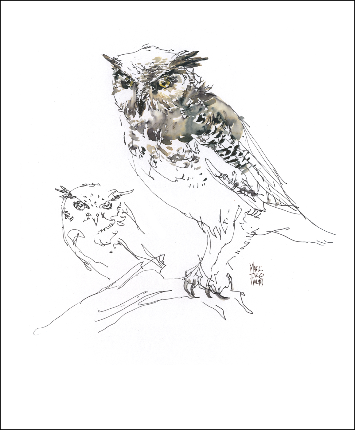 Owl Claws Drawing Great Horned Owl Drawings