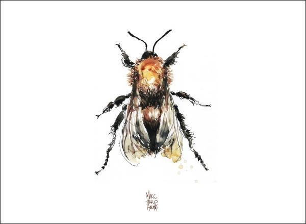 14June16_Insectarium Bees 01