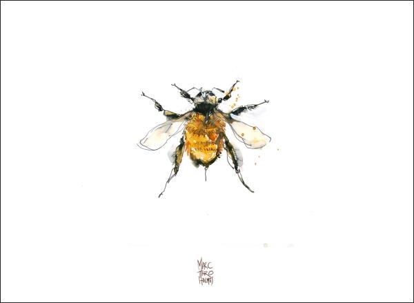 14June16_Insectarium Bees 02