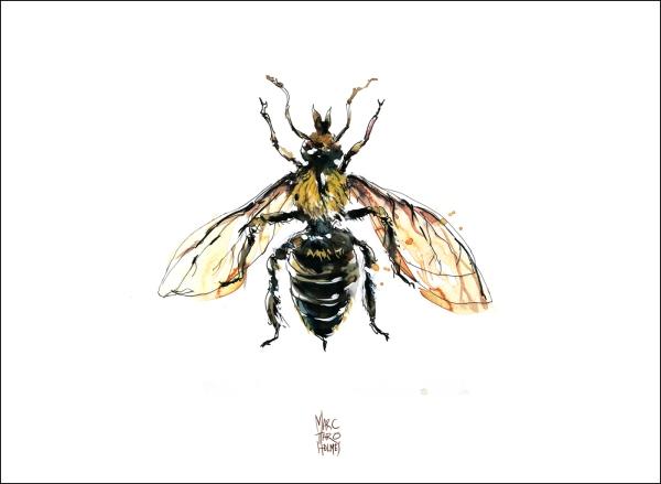 14June16_Insectarium Bees 03