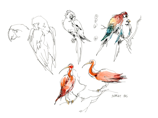 15Oct20_ArtNetBirds04
