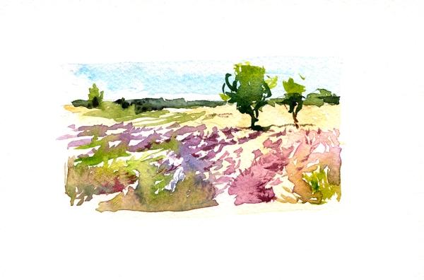 L'Occitane_Marc_paintings_006web