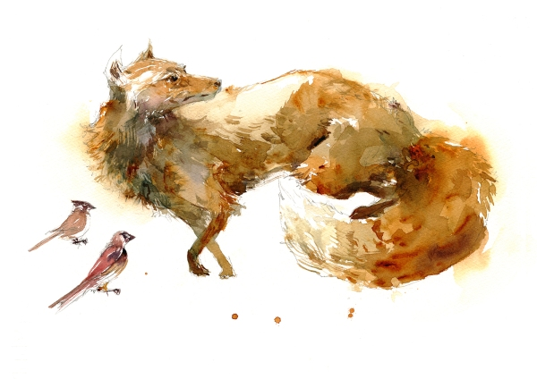 16dec15_marc-taro-holmes_watercolor_taxidermy-fox