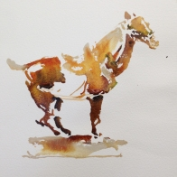 WIP_Positive Horse (3)